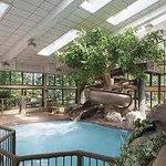 park vista's pool