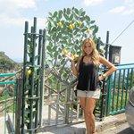 The famous lemons of the Amalfi Coast