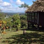 A look at San Ignacio from Cahal Pech Village Resort pool