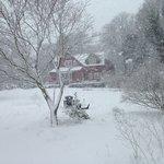 Pretty in Winter too!