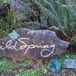 Wild Spring Sign