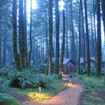Cabins in the woods