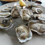 Biggest plumpest oysters I have ever had.