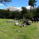 Comenzando la caminata para llegar a Glaciar Huemul