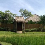 Rice fields villa entrance