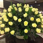 Spectacular roses in the lobby