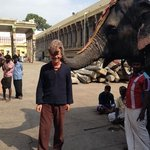 Elephant blessing at The Meenakshi Temple