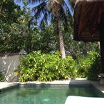 View of the plunge pool at our beach front villa