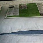 28 кроватей в номере