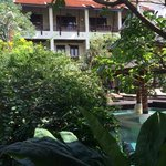 Lush greenery, building, pool