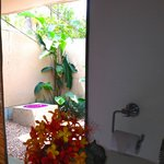 View from bathroom to private garden area