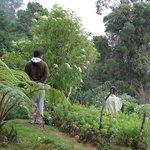 Wasantha in his garden