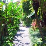 gardens at Kajane Mua