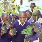 Volunteering with The Green Living Planet