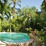 The pool nestled in our lush gardens