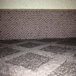 Carpet and carpet baseboard