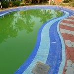 la piscine !!!........