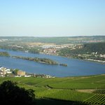 EvenTours Rheingau Tours