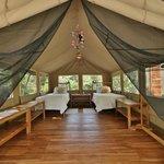 Tent No. 5