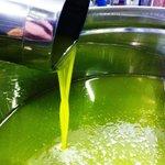 Il nostro olio extra vergine