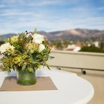 roof top view from wedding