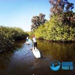 Harbor Paddle Company