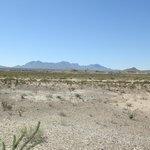 Desert near Persimmon Gap Visitor Center