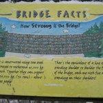 Placa com curiosidades da Capilano Suspension Bridge