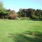 Front Garden/Lawn