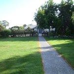 Front Garden/Lawn/Pathway