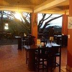 Canopy Bar