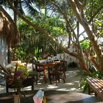shady lunch spot right off the beach