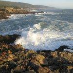 Scenic Pacific