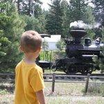 Sumpter Junction Wood burning Steam Locomotive