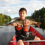 The Pike that ate New Jersey