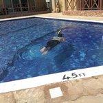 a guest enjoy swimming