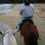 Foto de Playa Chiquita Riding Adventures