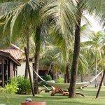 espace de verdure devant villa beachfront