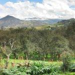 El Volcano vista de la Estancia