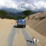 la duna se come la carretera de punta paloma