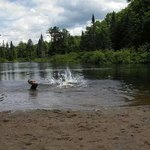 moose river swimming