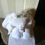 Towel-ephant!
