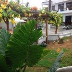 giardino con scorcio dell'hotel