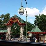zoológico de berlin