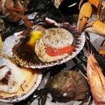 Un terroir La Mer une passion l'ostréiculture