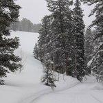 "Hiking ""Cache Creek Trail"" Feb. 2014"
