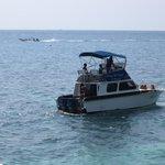 Dive Wishes Speedboat, Koh Tao, Thailand