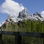 Everest Mountan em Animal Kingdon