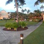 Marriott at Coconut