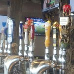 12 Beers on Tap PLUS Root Beer & Cream Soda